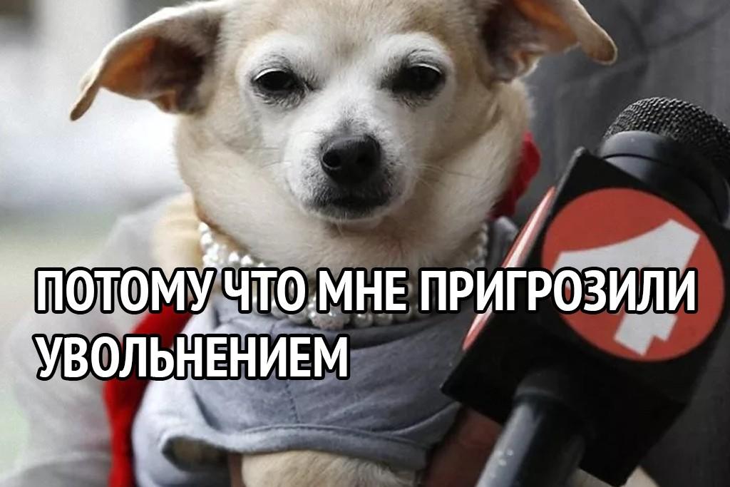 IMG_20210404_065357.jpg